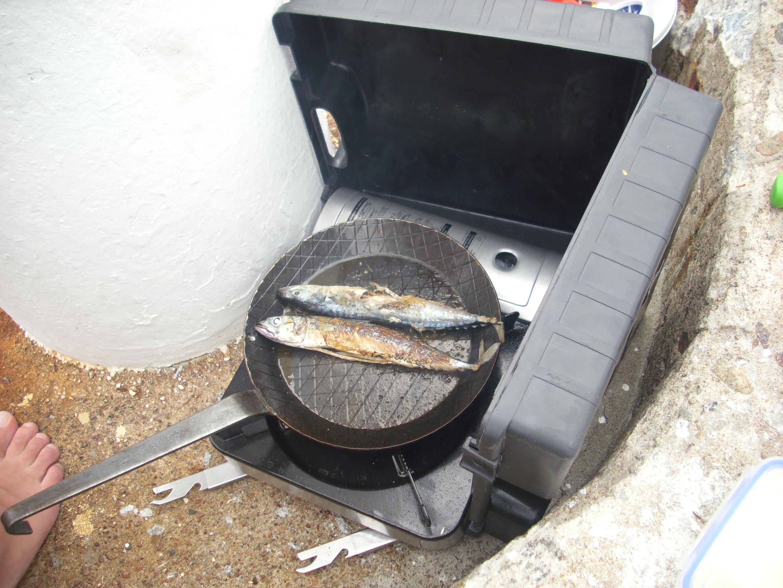frisch gefangene Makrelen in der Pfanne